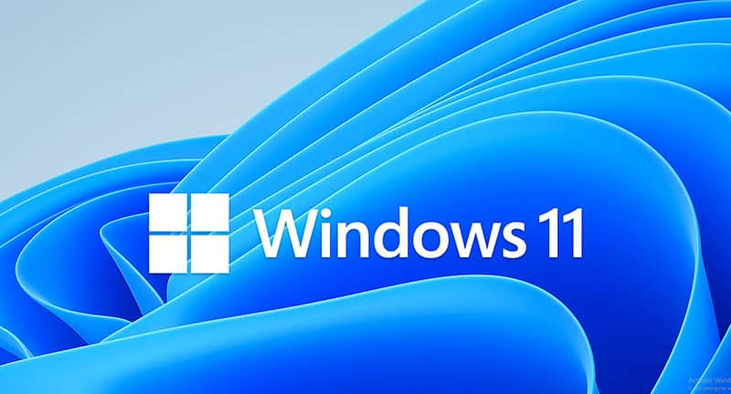 Windows 11 logo and background